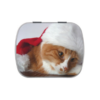 Cat in Santa Hat Jelly Belly Candy Tins