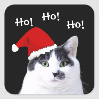 Cat in Santa Hat Square Sticker