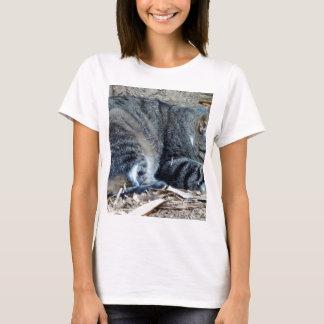 Cat in Sao Paulo T-Shirt