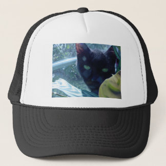 Cat in Sunlight Shadow Trucker Hat