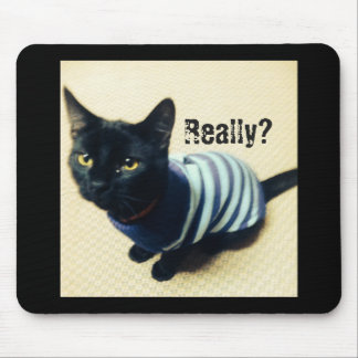 Cat in sweater really mouse pad