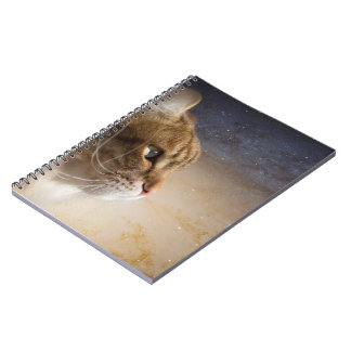 Cat in the Andromeda galaxy Spiral Notebook
