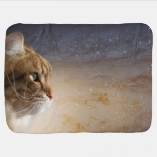 cat_in_the_andromeda_galaxy_stroller_blanket rdb9843e8166c4cbd85318a337288ef34_zfi5i_324?rlvnet=1 cat meme blankets & bed blankets zazzle,Cat Blanket Meme