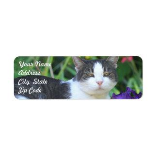 Cat in the garden label