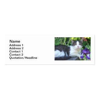 Cat in the garden mini business card
