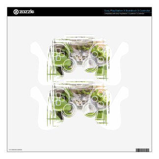 Cat in the garden PS3 controller decals