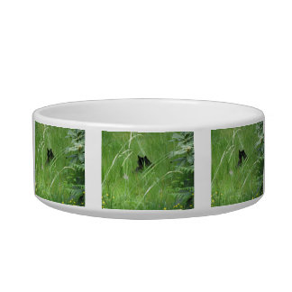 Cat In The Grass Bowl