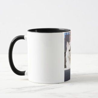 Cat In The House Mug