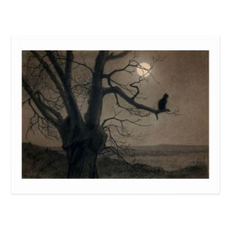 Cat in the Moonlight, , Alexandre Steinlen Postcard