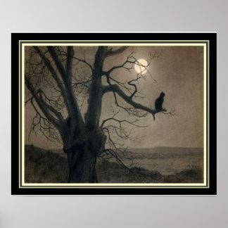 """Cat in the Moonlight"" ..."