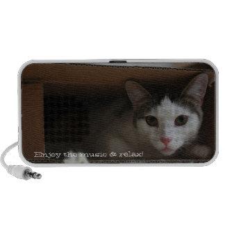 Cat in the music box - carton cat notebook speaker