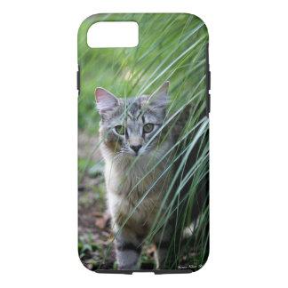 Cat in the Ornamental Grass iPhone case