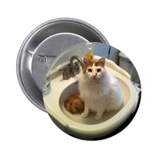 Cat in the Sink Pinback Buttons