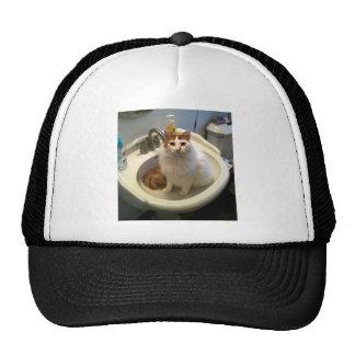 Cat in the Sink Trucker Hats