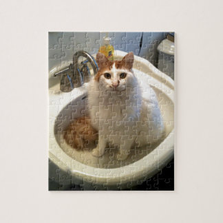 Cat in the Sink Puzzle