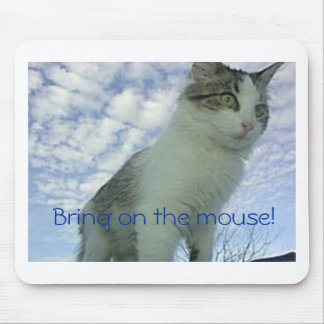 Cat in the sky mouse pad