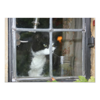 Cat in the window card