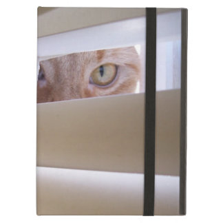 Cat in the Window iPad Air Cover
