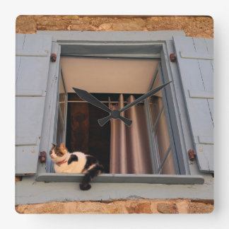 Cat in the window square wall clock