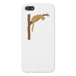 Cat In Tree iPhone 5/5S Cover