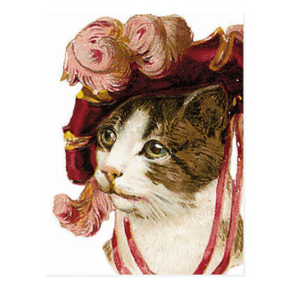 Cat in Victorian Hat Postcard