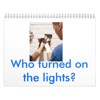 cat in wall, Who turned on the lights? Calendars