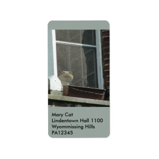 Cat in Window Label