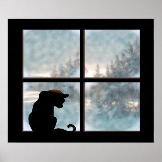 cat in window poster