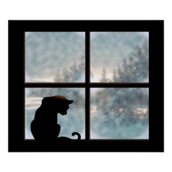 cat in window poster