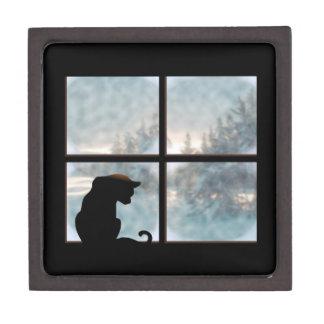 cat in window premium gift boxes
