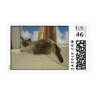 Cat In Window Stamp