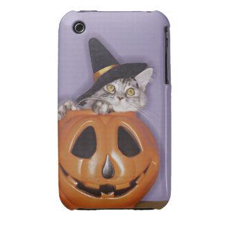 Cat in witch hat inside pumpkin Case-Mate iPhone 3 case