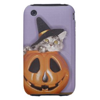 Cat in witch hat inside pumpkin tough iPhone 3 case