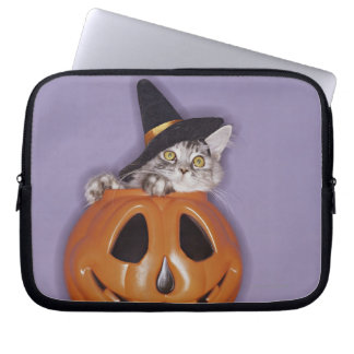 Cat in witch hat inside pumpkin computer sleeve