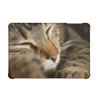 cat iPad mini retina covers