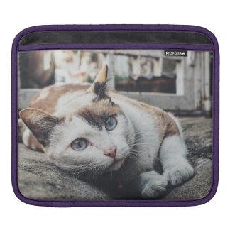 cat iPad sleeve