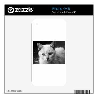 cat iPhone 4S skin