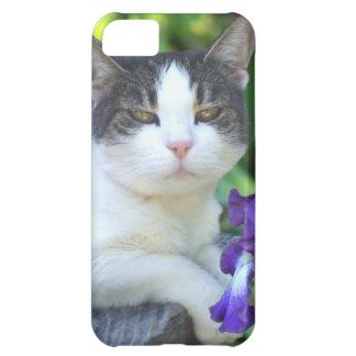 cat iPhone 5 Case-Mate phone case