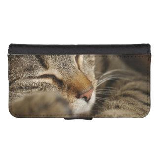 cat iPhone SE/5/5s wallet case