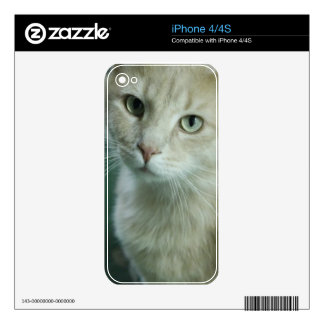 Cat iphone skin skin for the iPhone 4S