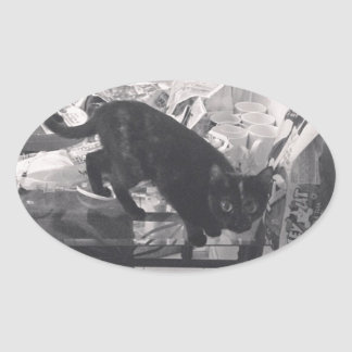 Cat is caught guilty oval sticker