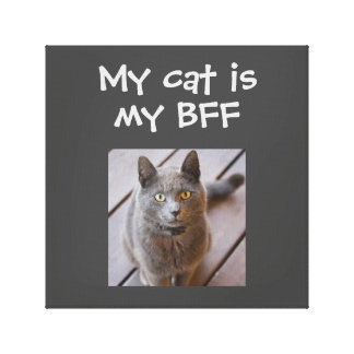 Cat Is My BFF Personalized Stretched Canvas Print