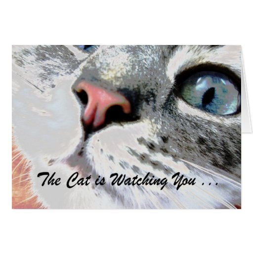 Cat is Watching Card