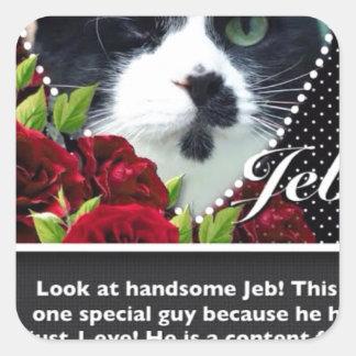 Cat: Jeb Square Sticker