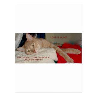 CAT JOKES POSTCARD