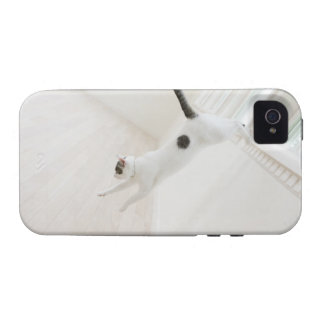 Cat jumping Case-Mate iPhone 4 cover