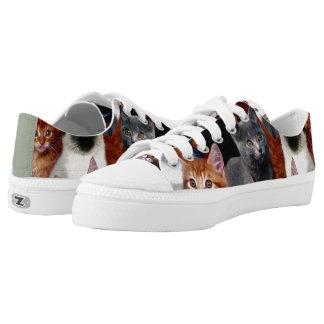 Cat Kickers Custom Low Top Zipz Printed Shoes