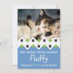 Cat/Kitten Adoption Announcement