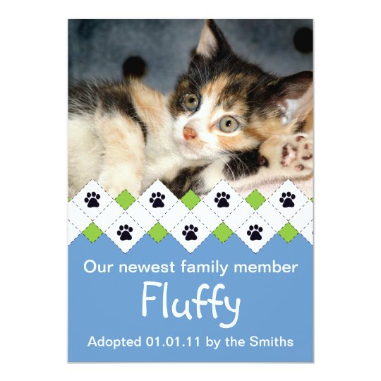 Cat/Kitten Adoption Announcement