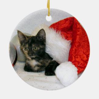 Tortoiseshell Cat Gifts On Zazzle